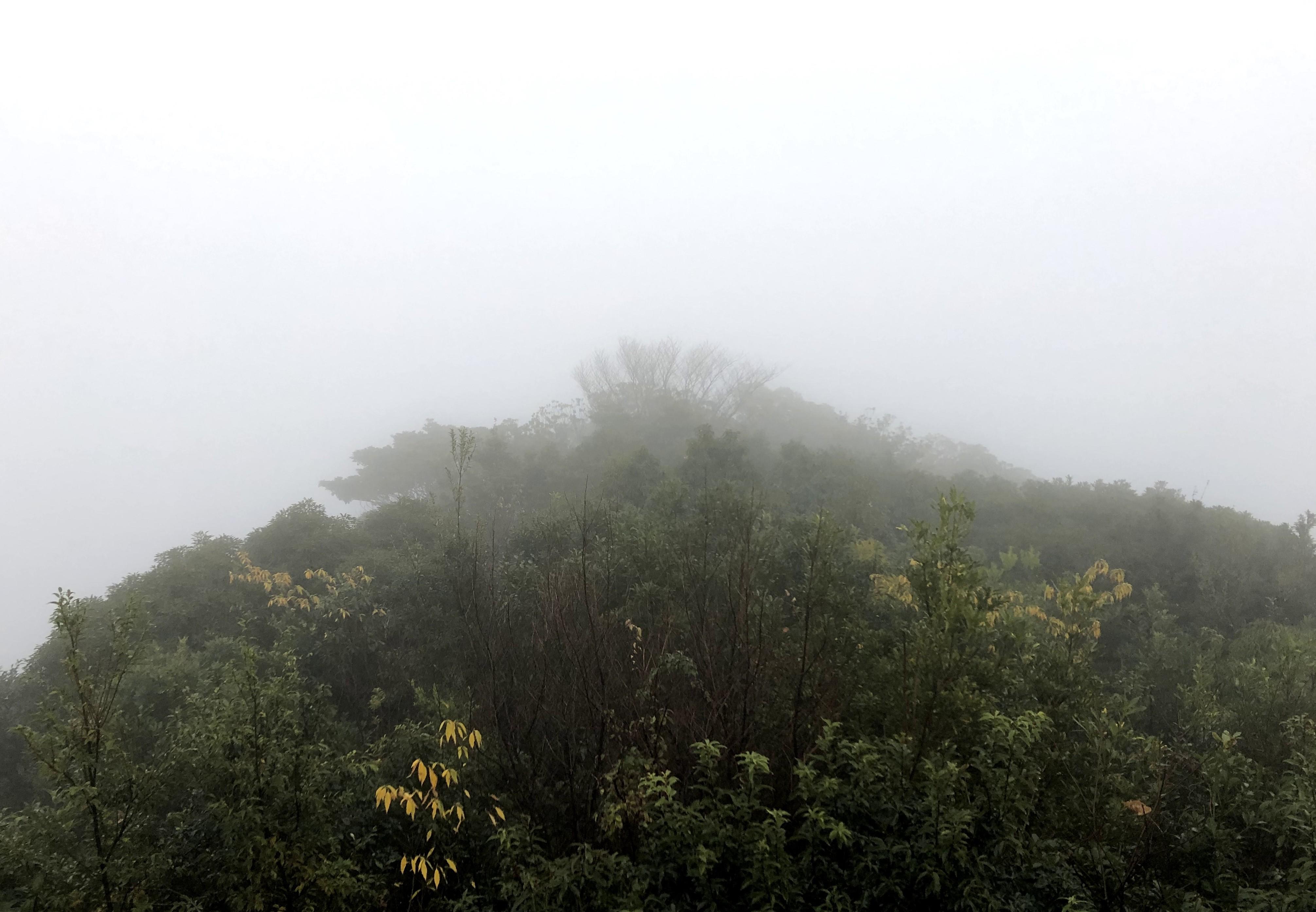 Ryo's Website | Ark on the wind